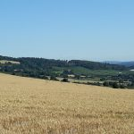 Hill View views